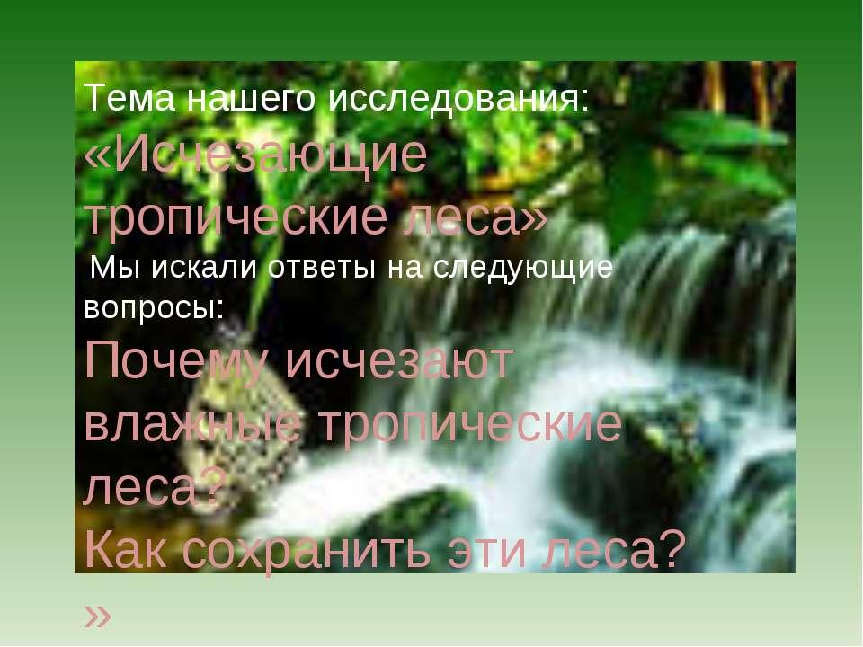 Тема нашего исследования: «Исчезающие тропические леса» Мы искали ответы на с...