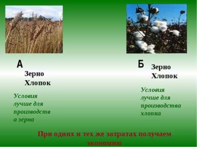 А Б Зерно Хлопок Зерно Хлопок Условия лучше для производства зерна Условия лу...