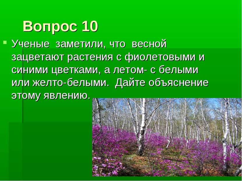 Вопрос 10 Ученые заметили, что весной зацветают растения с фиолетовыми и сини...