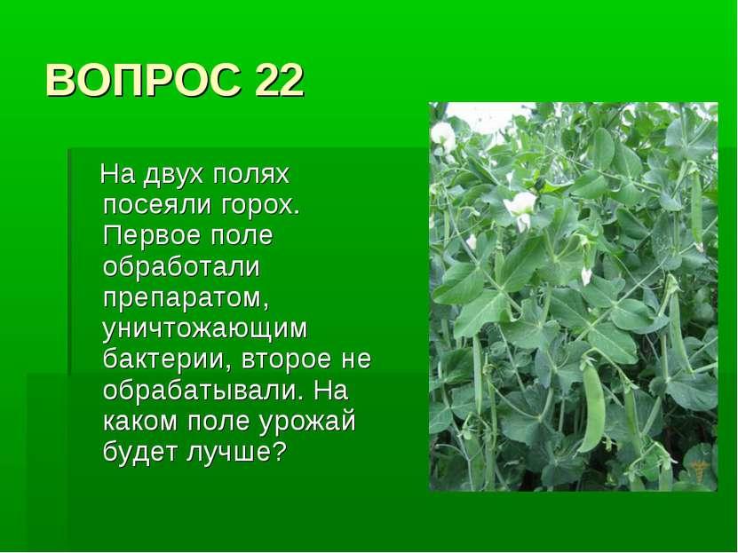 ВОПРОС 22 На двух полях посеяли горох. Первое поле обработали препаратом, уни...