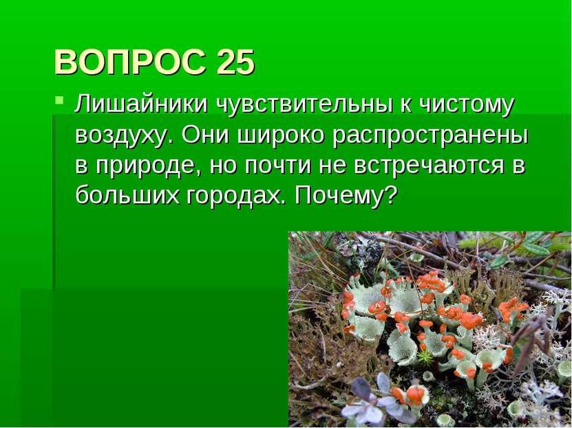 ВОПРОС 25 Лишайники чувствительны к чистому воздуху. Они широко распространен...