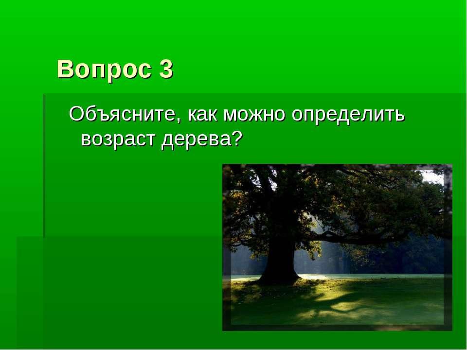 Вопрос 3 Объясните, как можно определить возраст дерева?