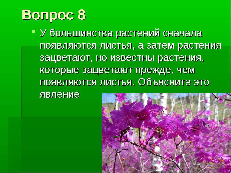 Вопрос 8 У большинства растений сначала появляются листья, а затем растения з...