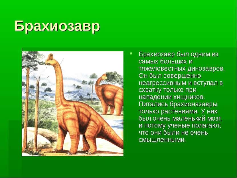 Брахиозавр Брахиозавр был одним из самых больших и тяжеловестных динозавров. ...