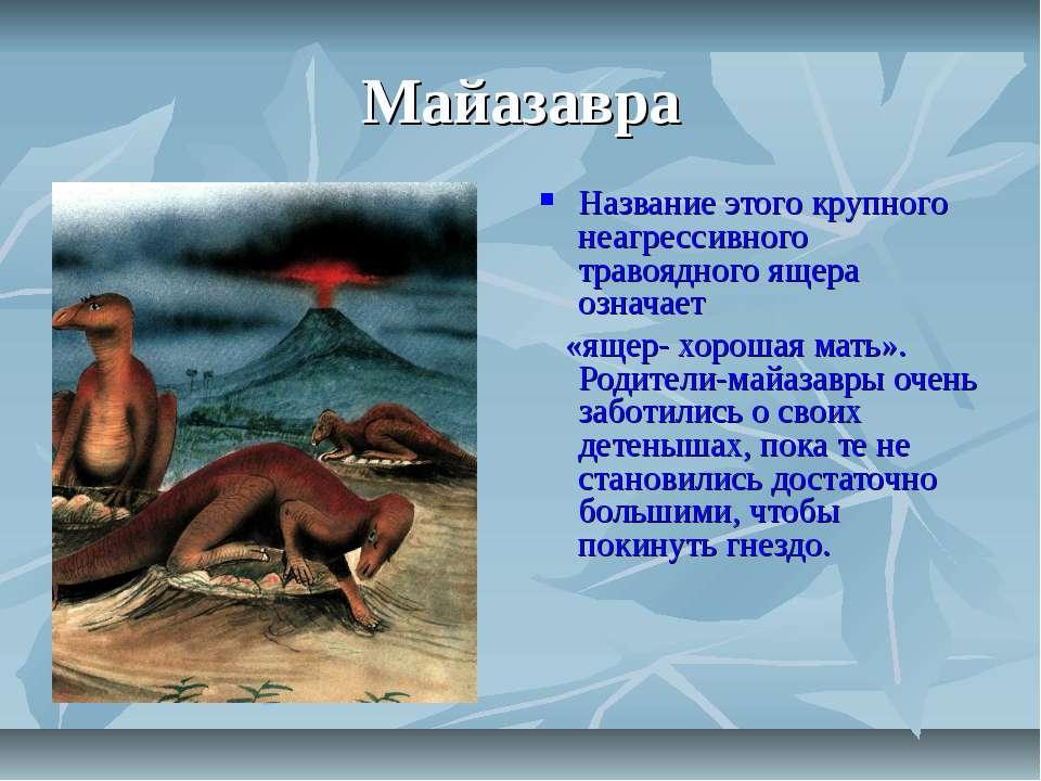 Майазавра Название этого крупного неагрессивного травоядного ящера означает «...
