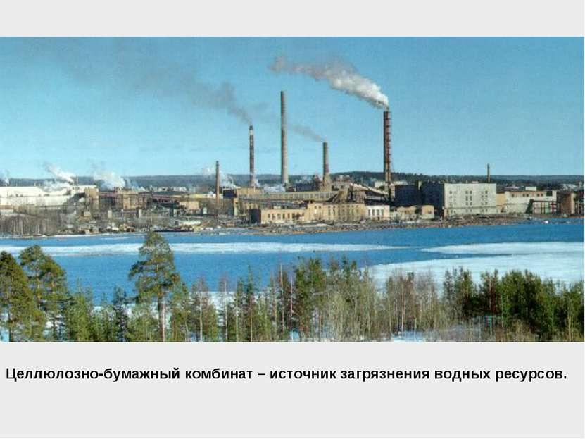 Целлюлозно-бумажный комбинат – источник загрязнения водных ресурсов.