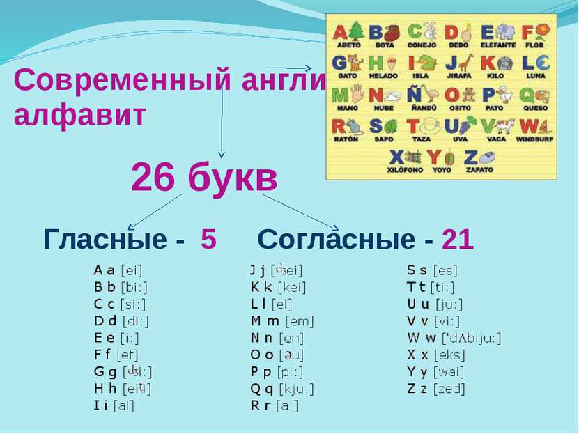 Современный английский алфавит Гласные - 5 Согласные - 21 26 букв