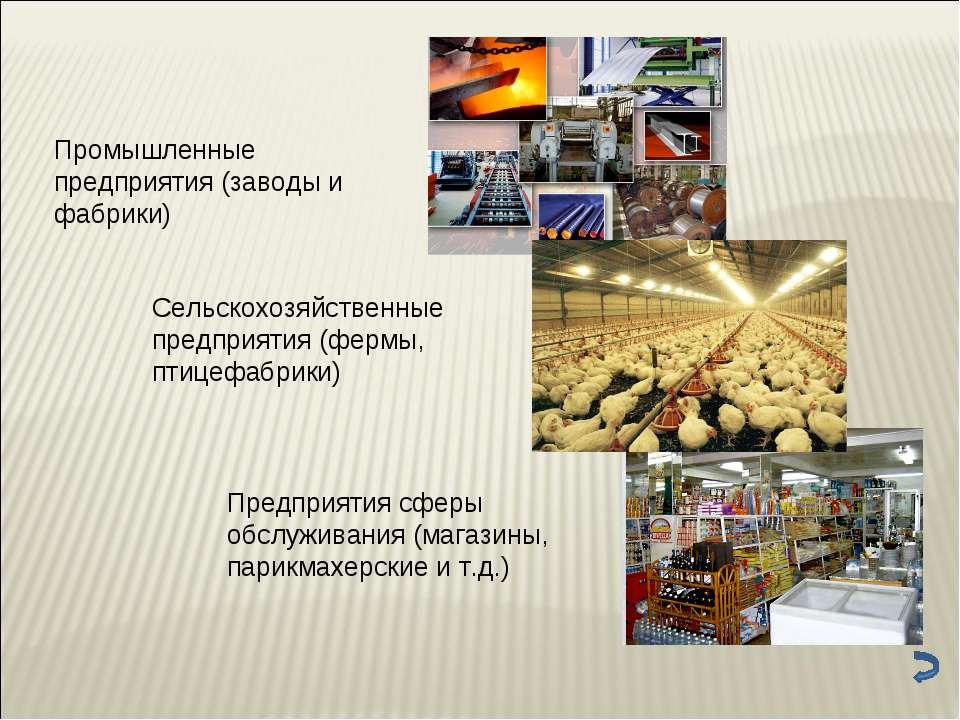 Промышленные предприятия (заводы и фабрики) Сельскохозяйственные предприятия ...