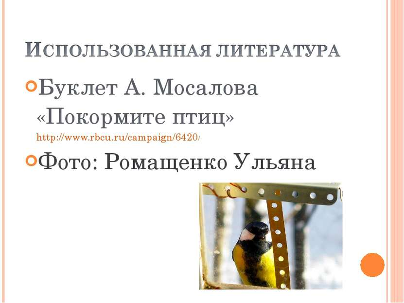 Буклет А. Мосалова «Покормите птиц» http://www.rbcu.ru/campaign/6420/ Фото: Р...