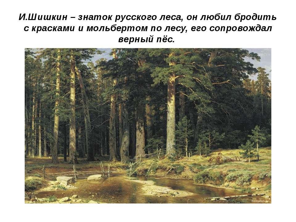 И.Шишкин – знаток русского леса, он любил бродить с красками и мольбертом по ...