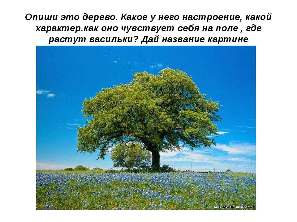 Опиши это дерево. Какое у него настроение, какой характер.как оно чувствует с...