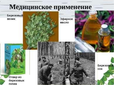 Медицинское применение Березовый веник Березовый сок Эфирное масло Отвар из б...