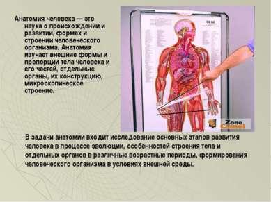 Анатомия человека — это наука о происхождении и развитии, формах и строении ч...