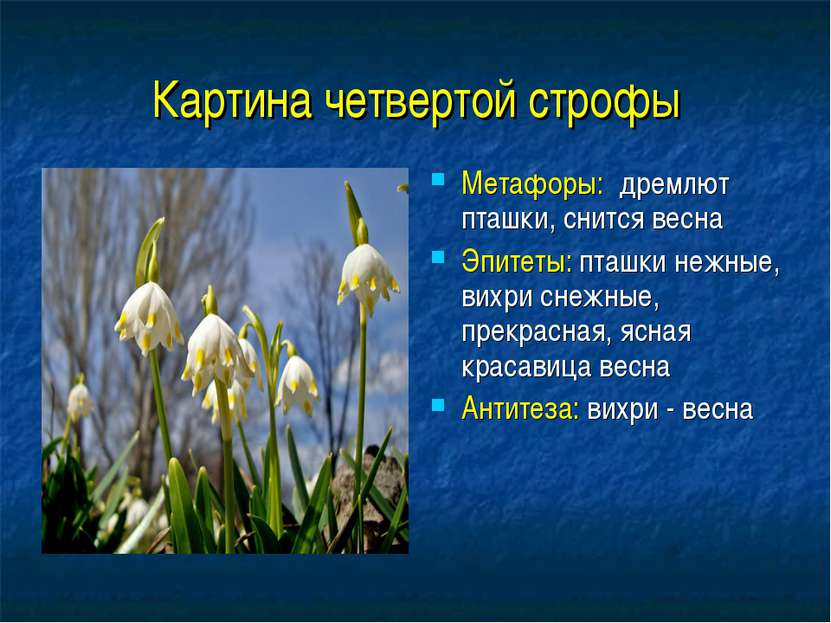 Картина четвертой строфы Метафоры: дремлют пташки, снится весна Эпитеты: пташ...