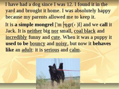 I have had a dog since I was 12. I found it in the yard and brought it home. ...