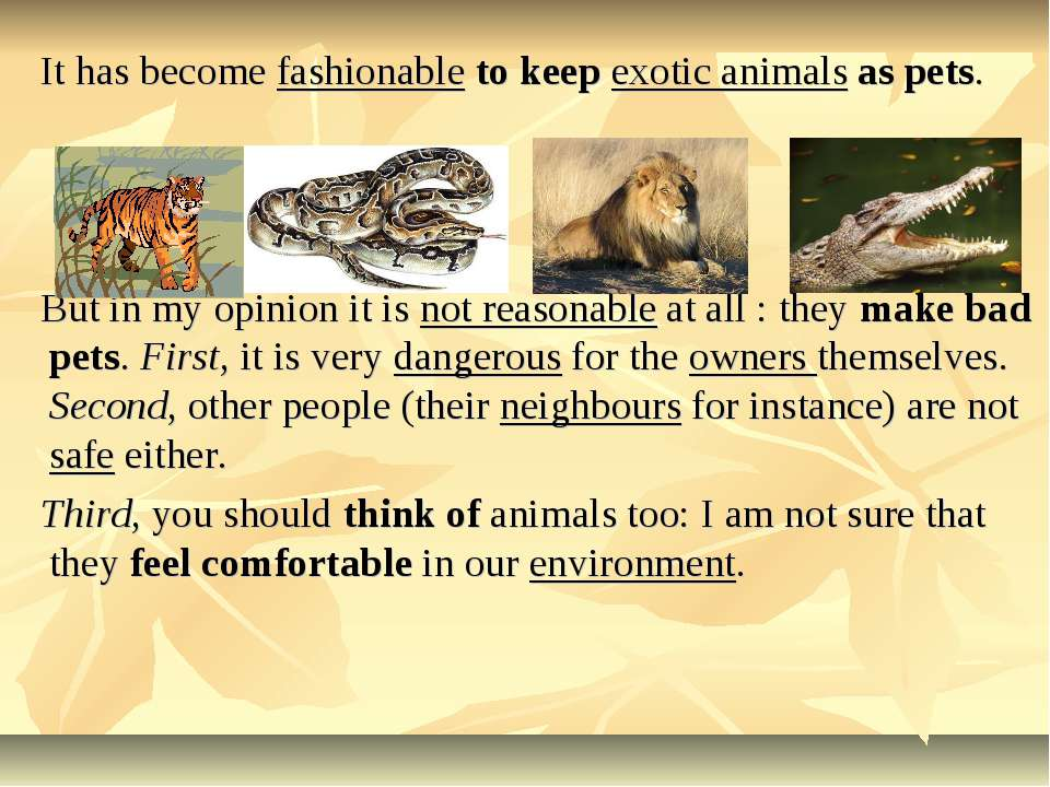 It has become fashionable to keep exotic animals as pets. But in my opinion i...