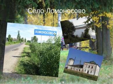 Село Ломоносово