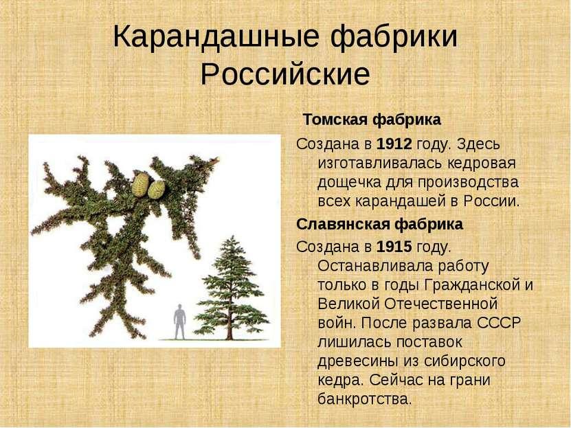 Карандашные фабрики Российские Томская фабрика Создана в 1912 году. Здесь изг...