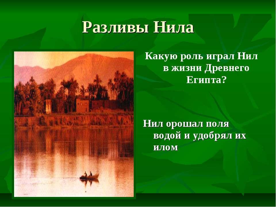 Разливы Нила Какую роль играл Нил в жизни Древнего Египта? Нил орошал поля во...