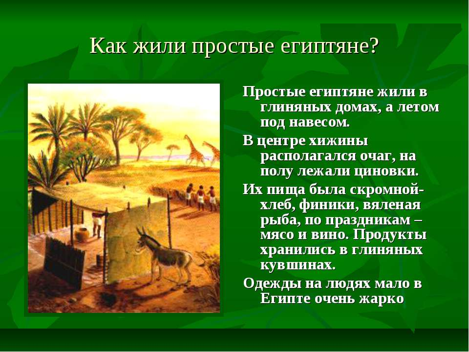 Как жили простые египтяне? Простые египтяне жили в глиняных домах, а летом по...