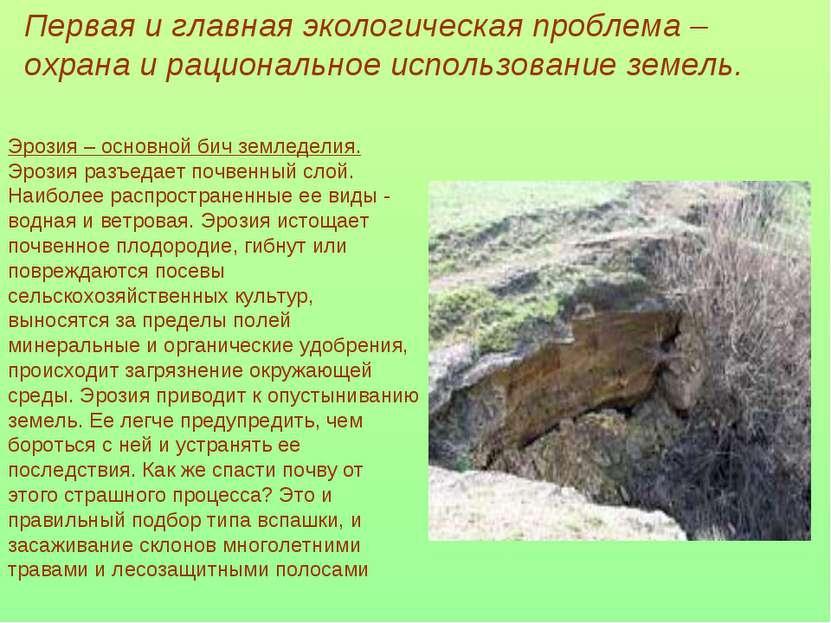 Первая и главная экологическая проблема – охрана и рациональное использование...