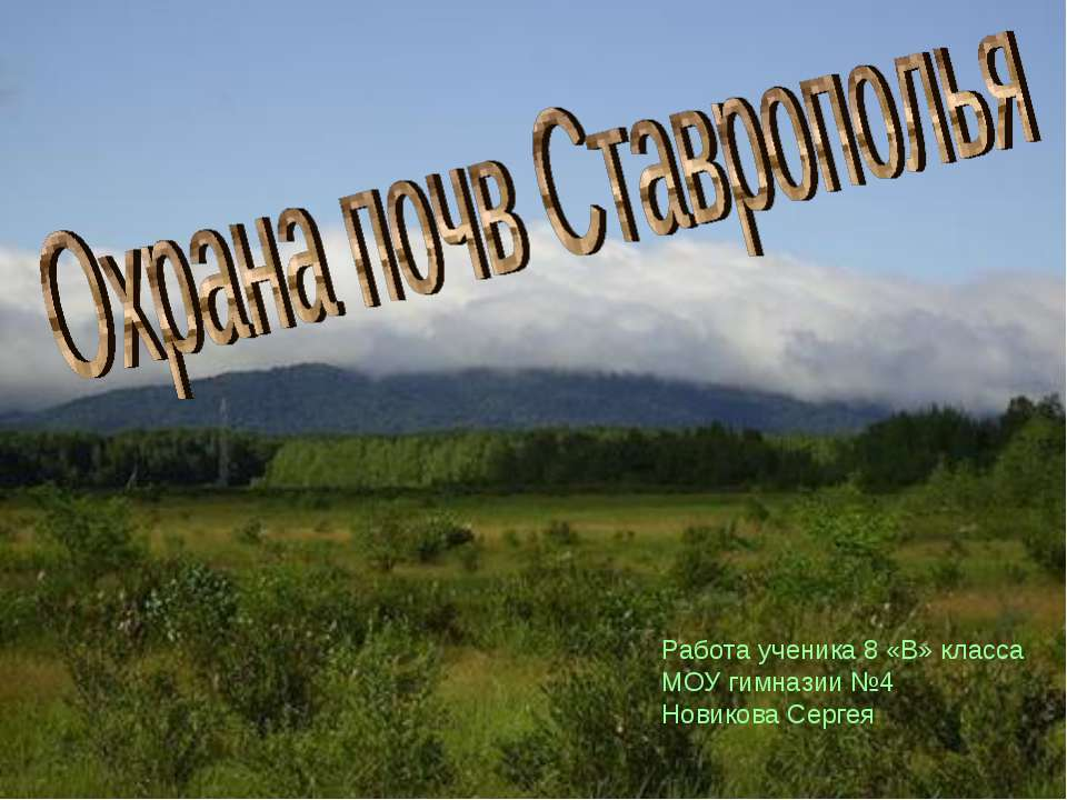 Работа ученика 8 «В» класса МОУ гимназии №4 Новикова Сергея