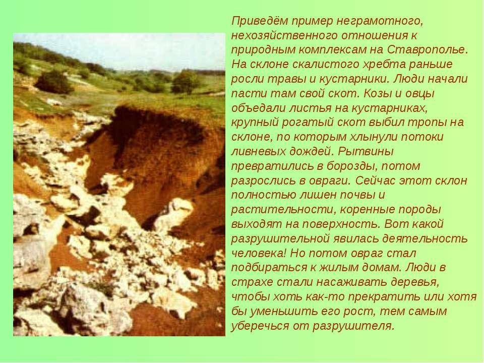 Приведём пример неграмотного, нехозяйственного отношения к природным комплекс...