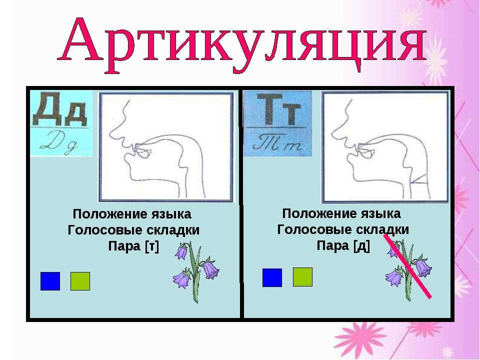 Положение языка Голосовые складки Пара [т] Положение языка Голосовые складки ...