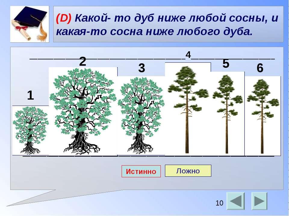 (D) Какой- то дуб ниже любой сосны, и какая-то сосна ниже любого дуба. ______...