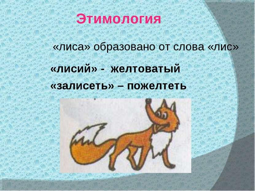 Этимология «лиса» образовано от слова «лис» «лисий» - желтоватый «залисеть» –...