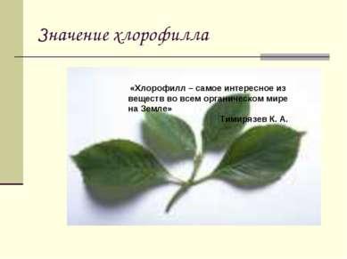 Значение хлорофилла «Хлорофилл – самое интересное из веществ во всем органиче...