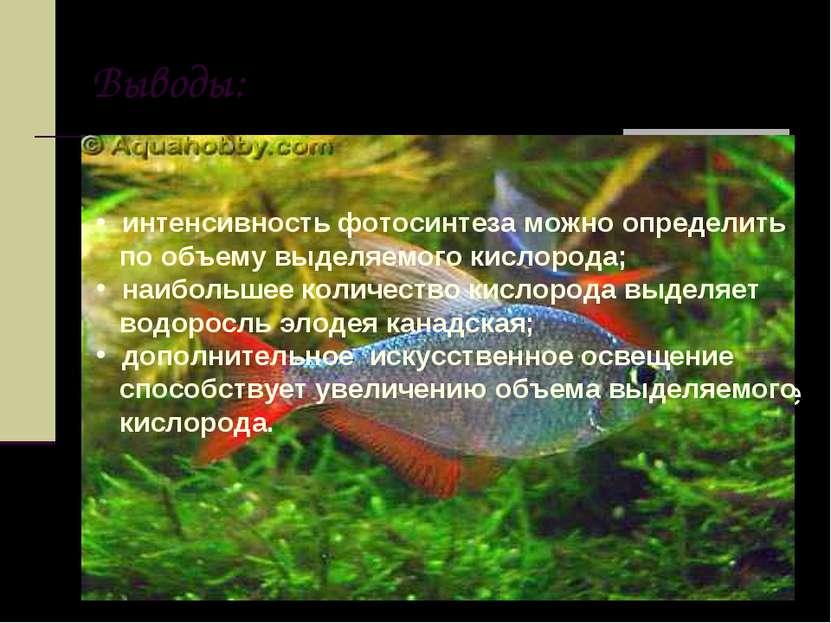 Выводы: интенсивность фотосинтеза можно определить по объему выделяемого кисл...