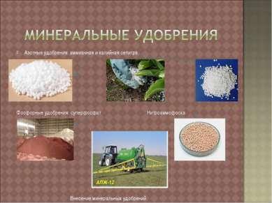 Азотные удобрения: аммиачная и калийная селитра Фосфорные удобрения: суперфос...