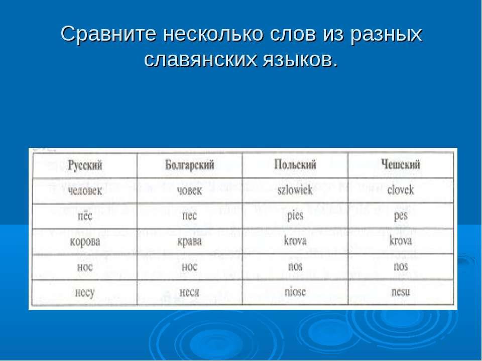 Сравните несколько слов из разных славянских языков.