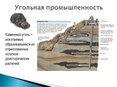 Каменный уголь – ископаемое, образовавшееся из спрессованных остатков доистор...