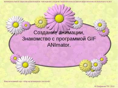 Создание анимации, Знакомство с программой GIF ANImator. МУНИЦИПАЛЬНОЕ ОБЩЕОБ...