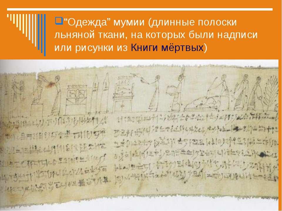 """""""Одежда"""" мумии (длинные полоски льняной ткани, на которых были надписи или ри..."""