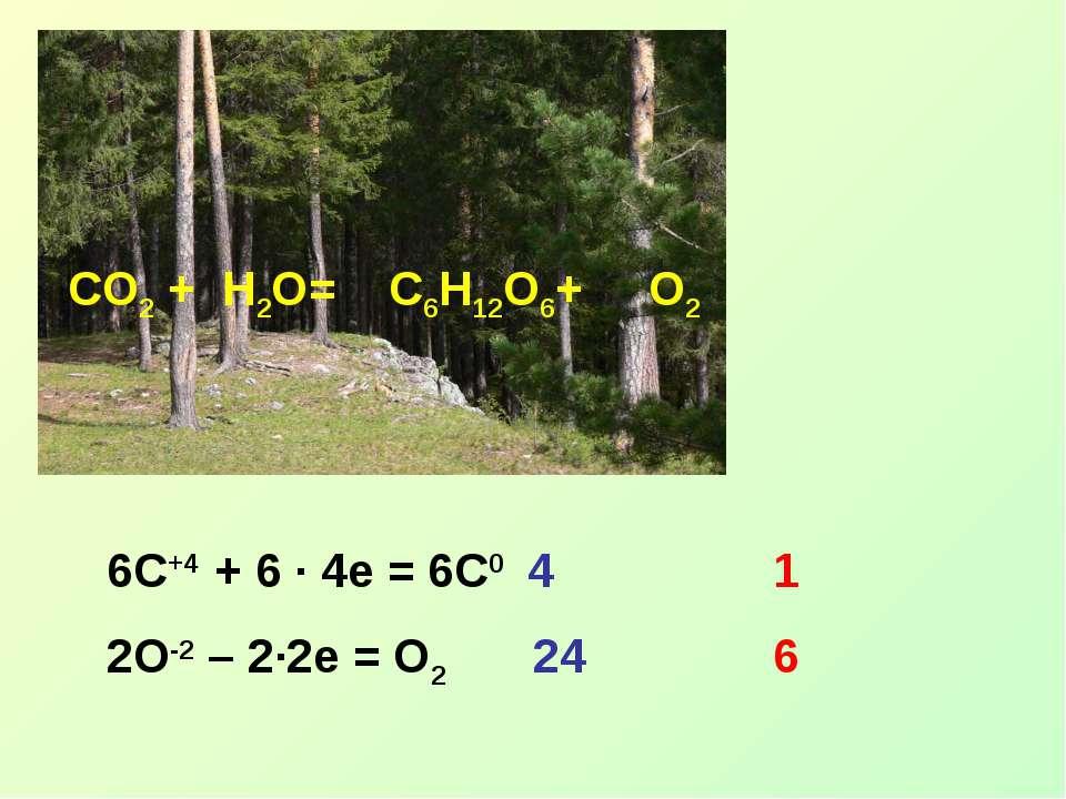 CO2 + H2O= C6H12O6+ O2 6C+4 + 6 ∙ 4e = 6C0 4 2O-2 – 2∙2e = O2 24 1 6