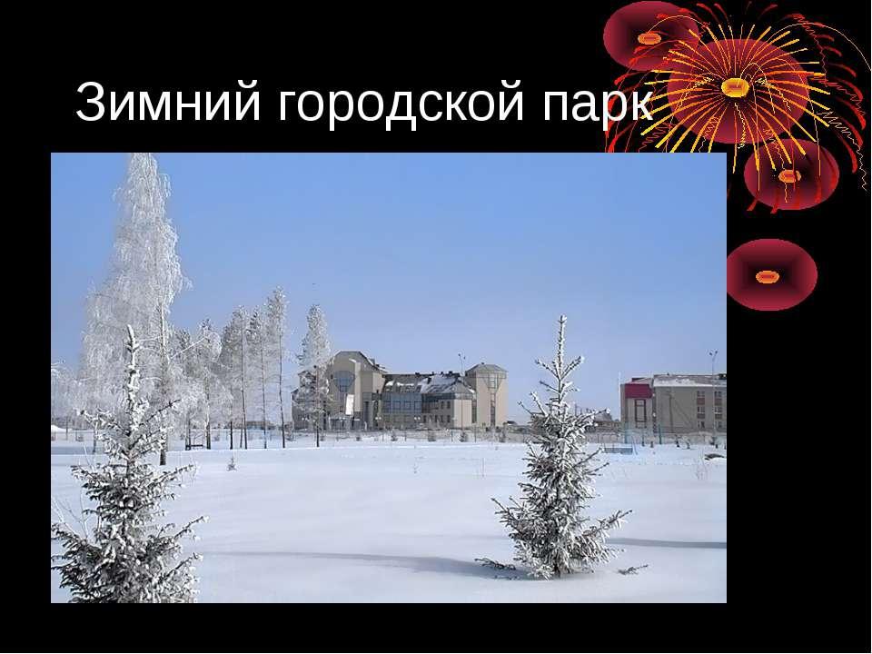 Зимний городской парк