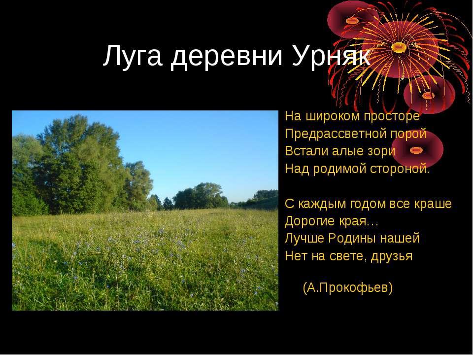 Луга деревни Урняк На широком просторе Предрассветной порой Встали алые зори ...