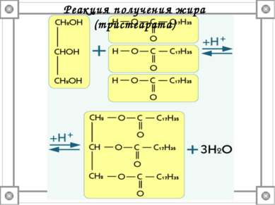 Реакция получения жира (тристеарата)