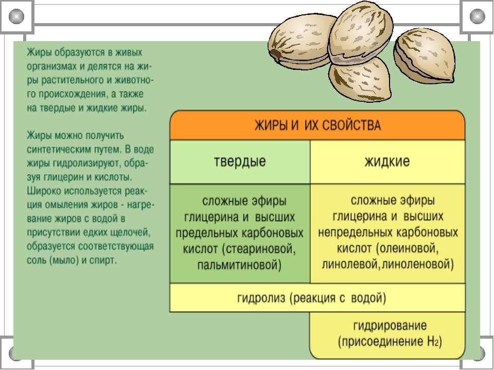 Объясните почему термины липиды и жиры не являются синонимами