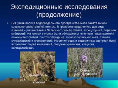 Экспедиционные исследования (продолжение) Вся узкая полоса водораздельного пр...