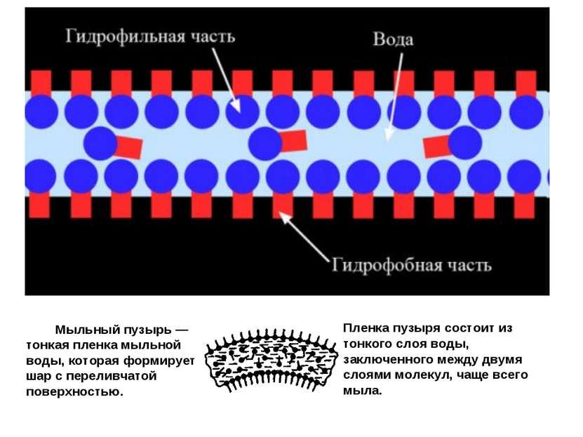 Мыльный пузырь — тонкая пленка мыльной воды, которая формирует шар с переливч...