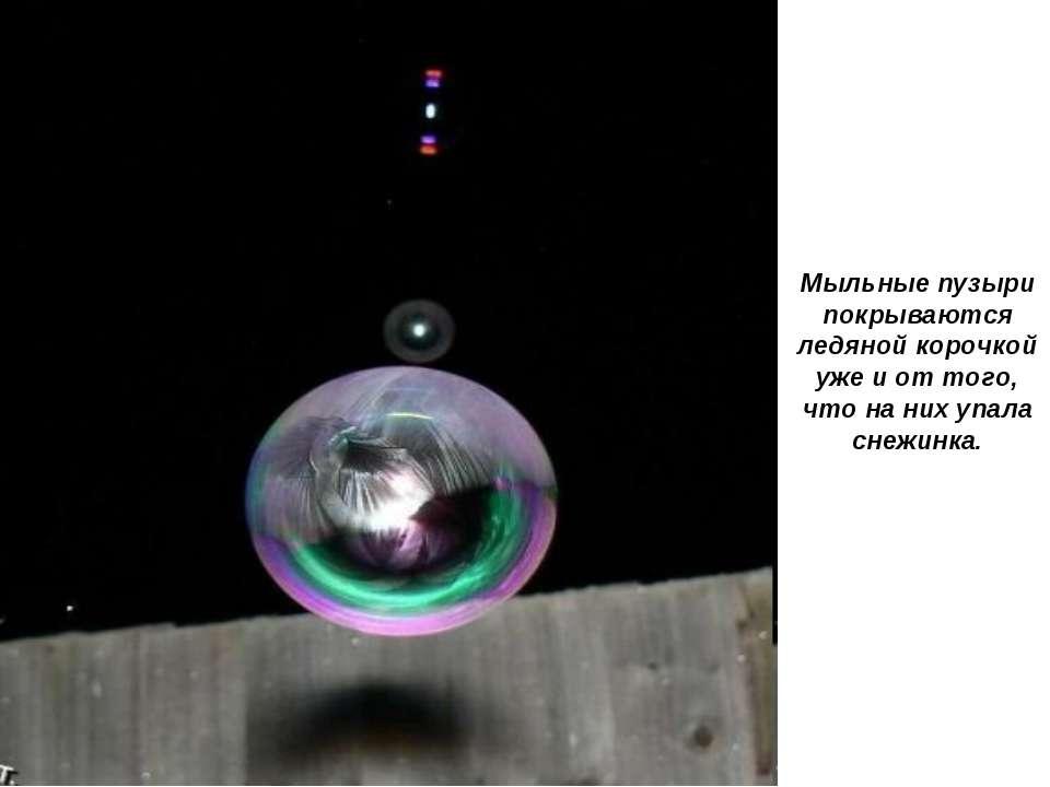 Мыльные пузыри покрываются ледяной корочкой уже и от того, что на них упала с...