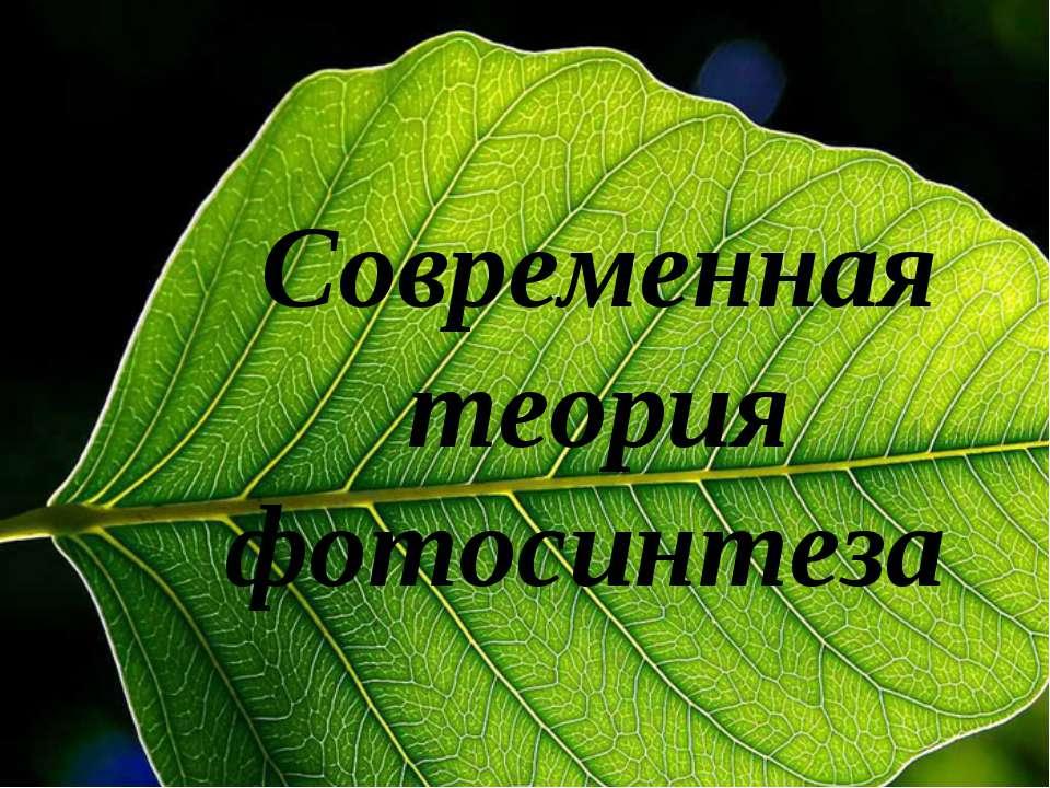 Современная теория фотосинтеза