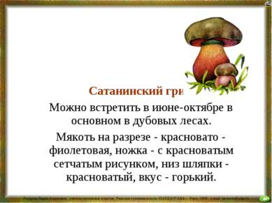 Сатанинский гриб Можно встретить в июне-октябре в основном в дубовых лесах. М...