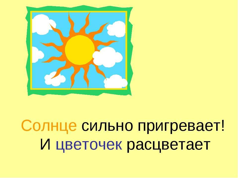 Солнце сильно пригревает! И цветочек расцветает