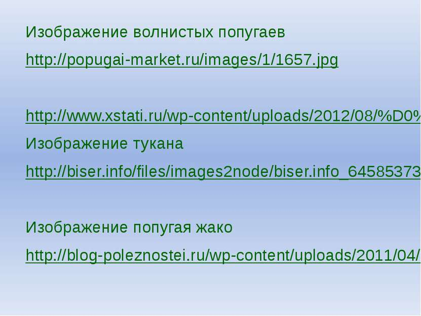Изображение волнистых попугаев http://popugai-market.ru/images/1/1657.jpg htt...