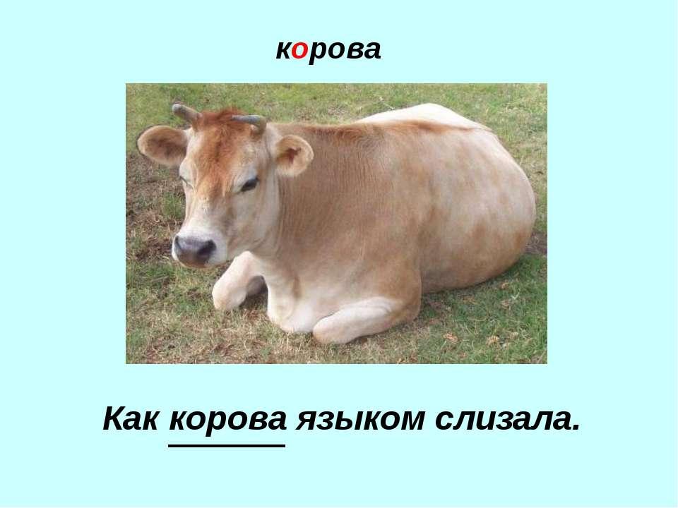 корова Как корова языком слизала.